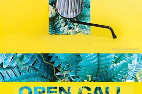 PHOTOGRAPHERS OPEN CALL : LOS ANGELES CA.