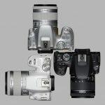CANON EOS 200D-EOS REBEL SL2 Una alternativa para los fotógrafos de móviles