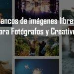 Arcadina -Imagenes Libres Para Ti